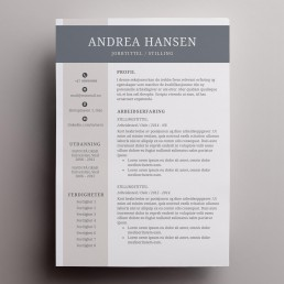 CV mal moderne